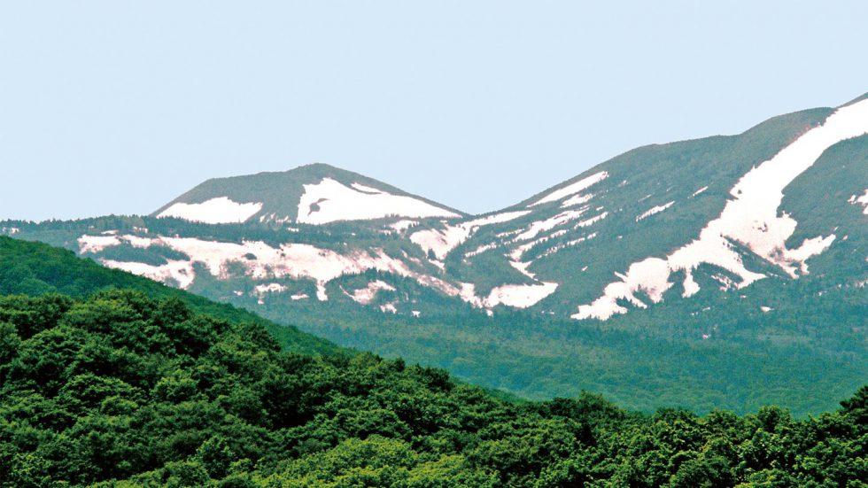 山を見よう!雪形を見つけよう!
